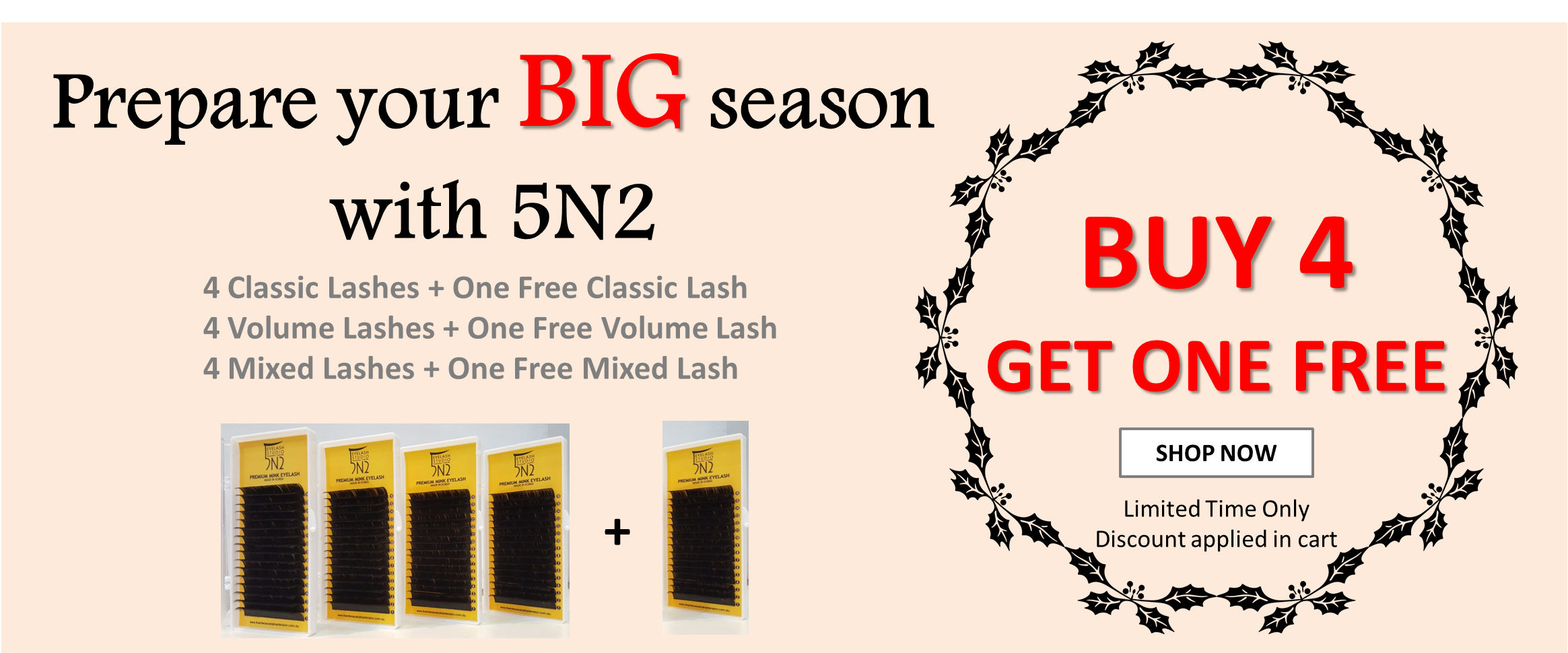 5N2 Eye Lash Big Sale